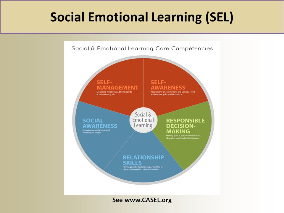 Social Emotional Learning (SEL)