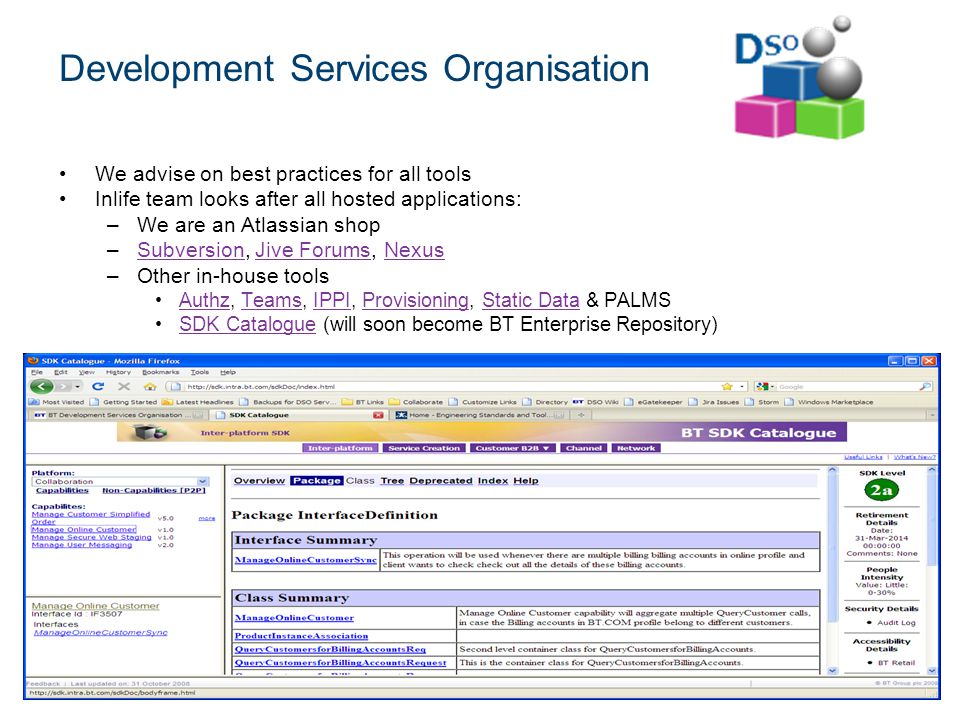 Development Services Organisation