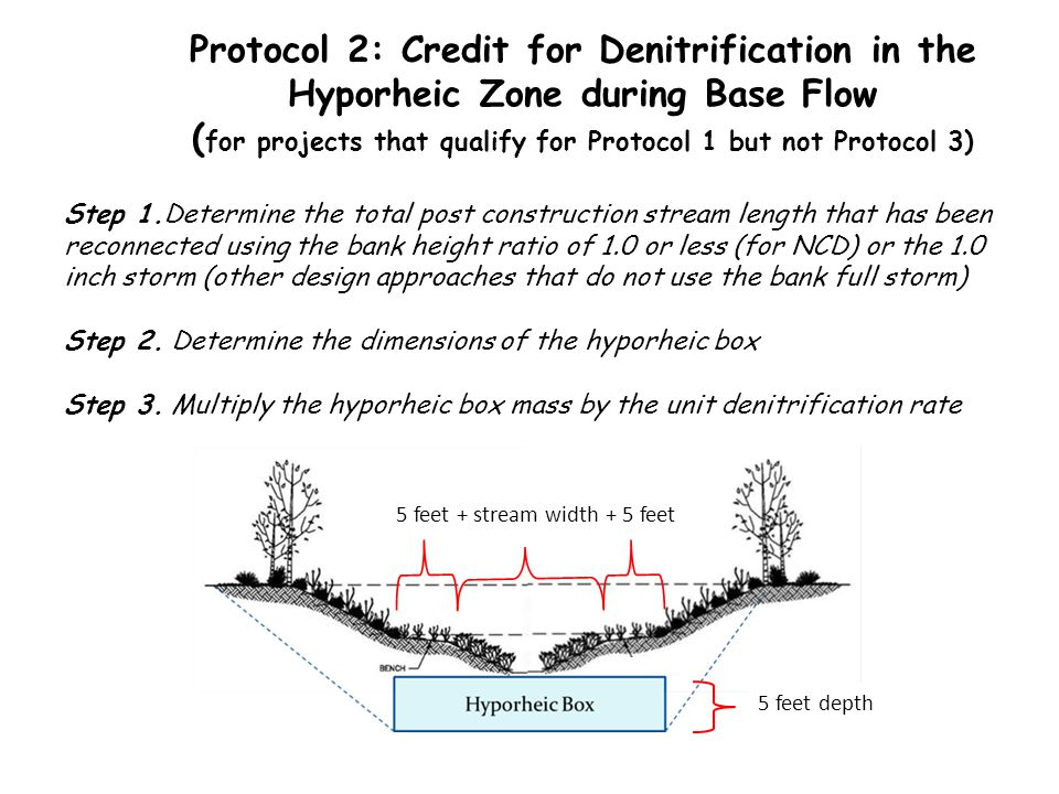 Protocol 2: Credit for Denitrification in the Hyporheic Zone during Base Flow (for projects that qualify for Protocol 1 but not Protocol 3)