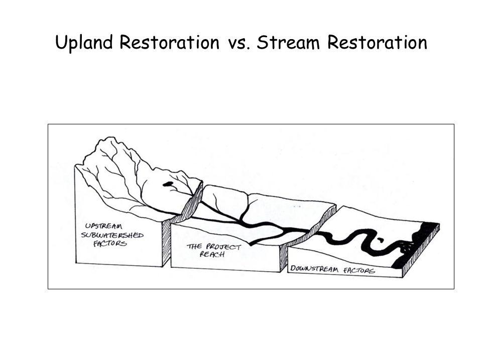 Upland Restoration vs. Stream Restoration