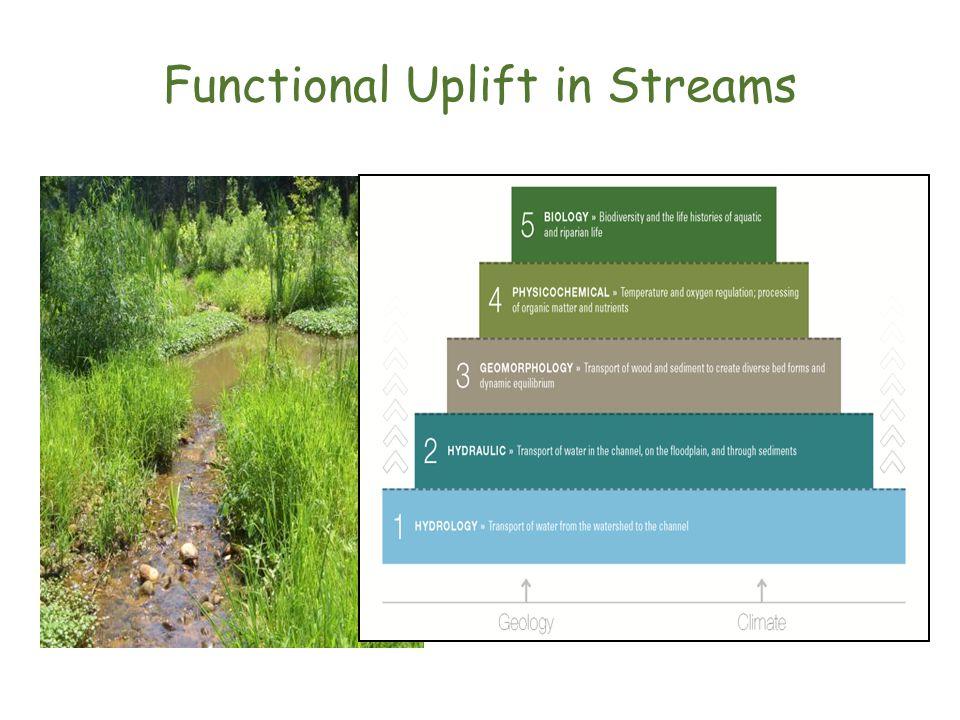 Functional Uplift in Streams