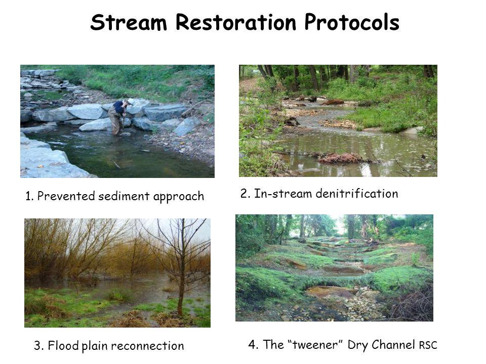Stream Restoration Protocols