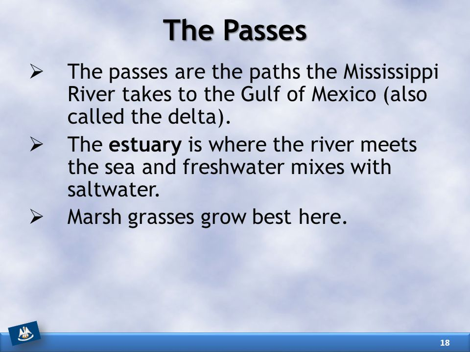 The Passes The passes are the paths the Mississippi River takes to the Gulf of Mexico (also called the delta).