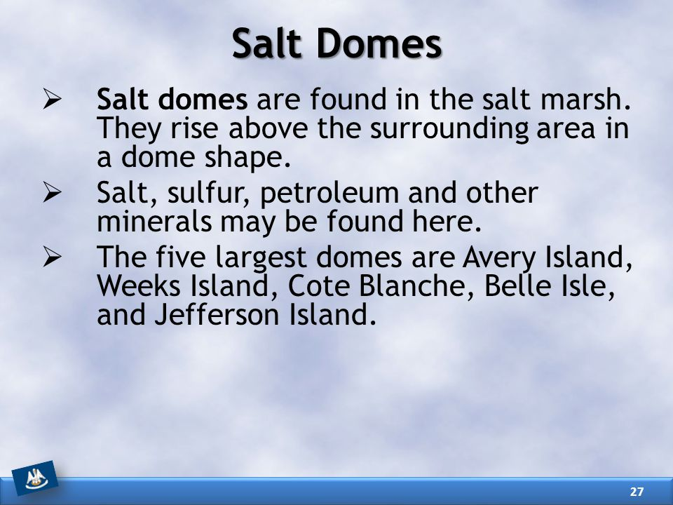 Salt Domes Salt domes are found in the salt marsh. They rise above the surrounding area in a dome shape.