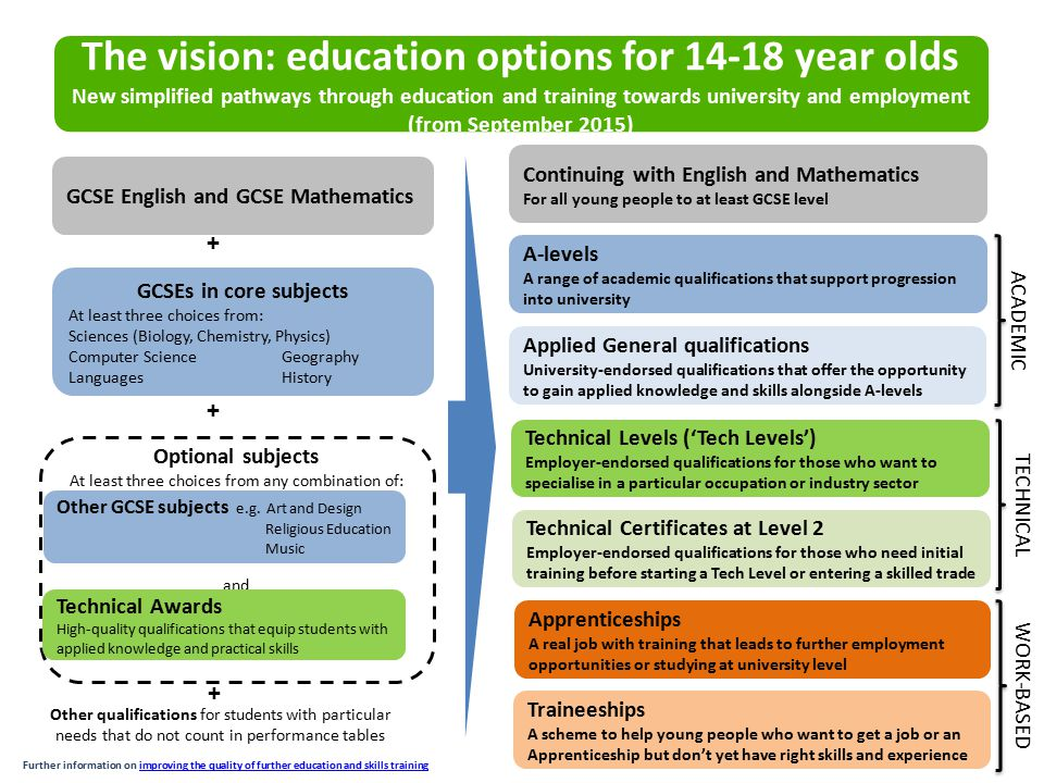 The vision: education options for 14-18 year olds