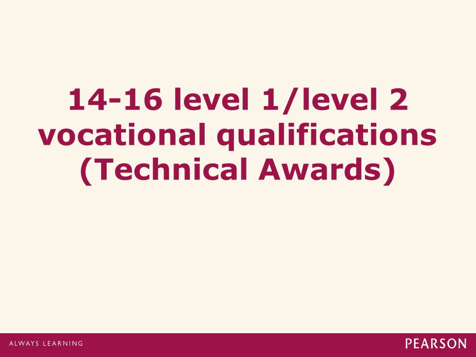 14-16 level 1/level 2 vocational qualifications (Technical Awards)