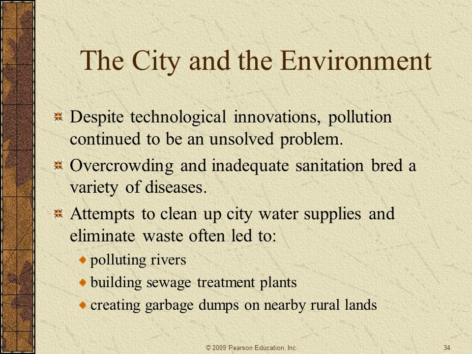 The City and the Environment