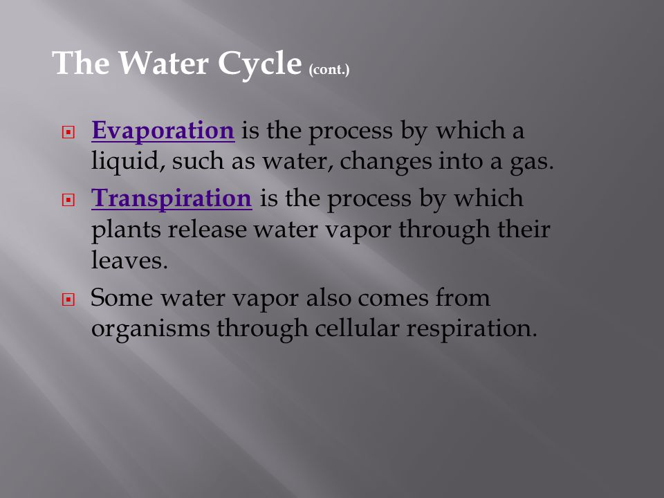 The Water Cycle (cont.) Evaporation is the process by which a liquid, such as water, changes into a gas.
