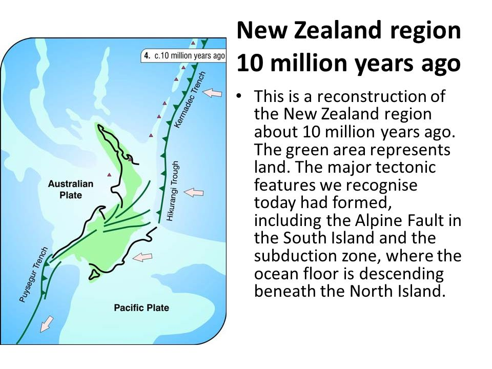 New Zealand region 10 million years ago