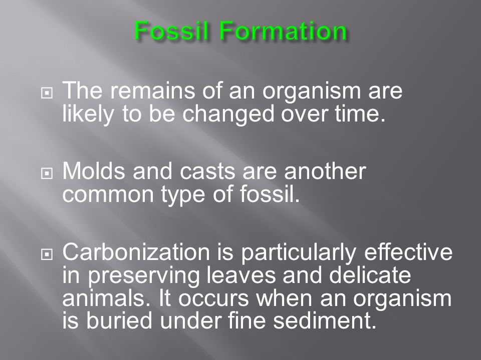 Fossil Formation The remains of an organism are likely to be changed over time. Molds and casts are another common type of fossil.