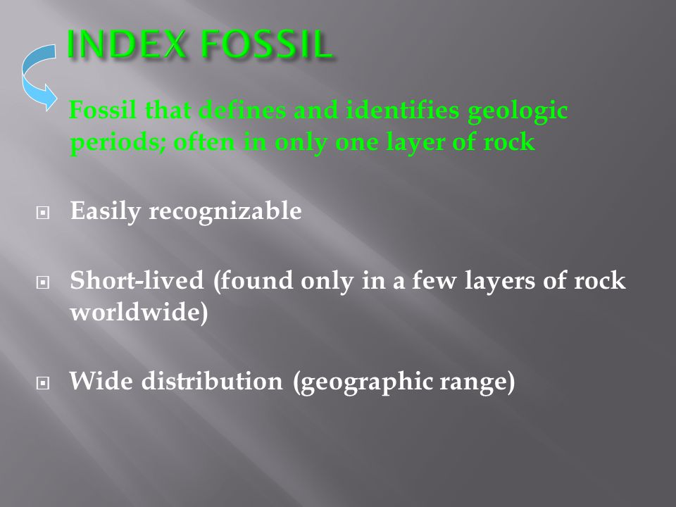 INDEX FOSSIL Fossil that defines and identifies geologic periods; often in only one layer of rock. Easily recognizable.