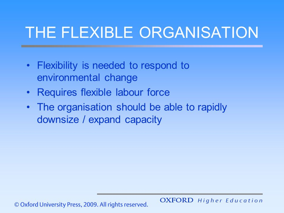 THE FLEXIBLE ORGANISATION