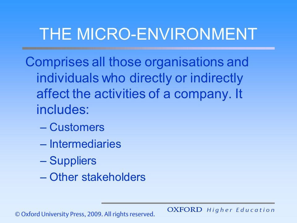 THE MICRO-ENVIRONMENT
