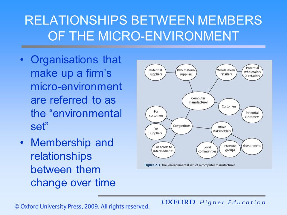 RELATIONSHIPS BETWEEN MEMBERS OF THE MICRO-ENVIRONMENT