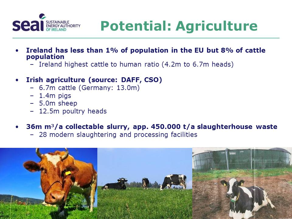 Potential: Agriculture