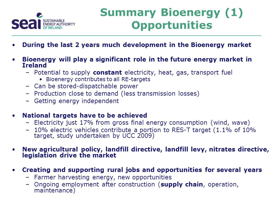 Summary Bioenergy (1) Opportunities
