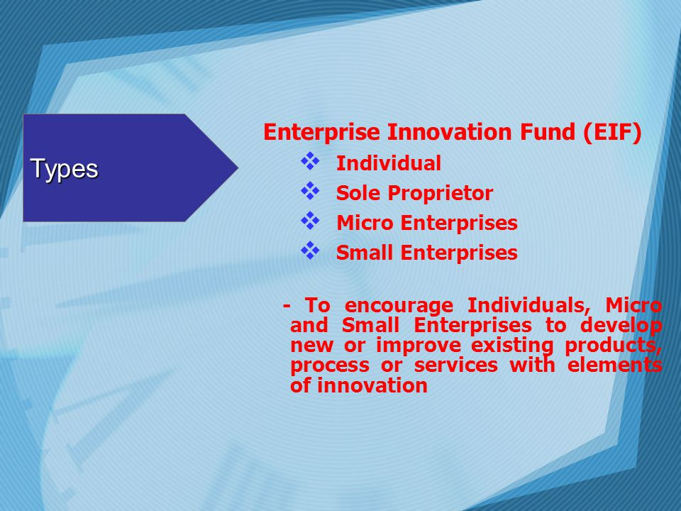 Types Enterprise Innovation Fund (EIF) Individual Sole Proprietor