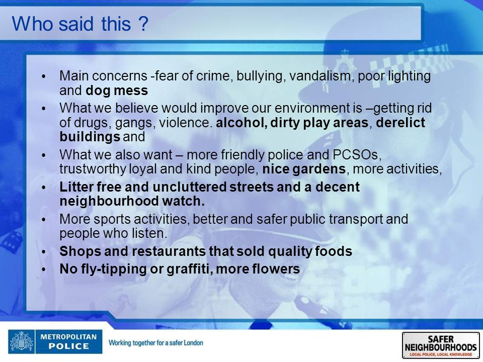 Who said this Main concerns -fear of crime, bullying, vandalism, poor lighting and dog mess.