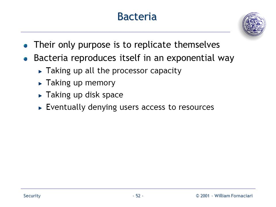 Bacteria Their only purpose is to replicate themselves
