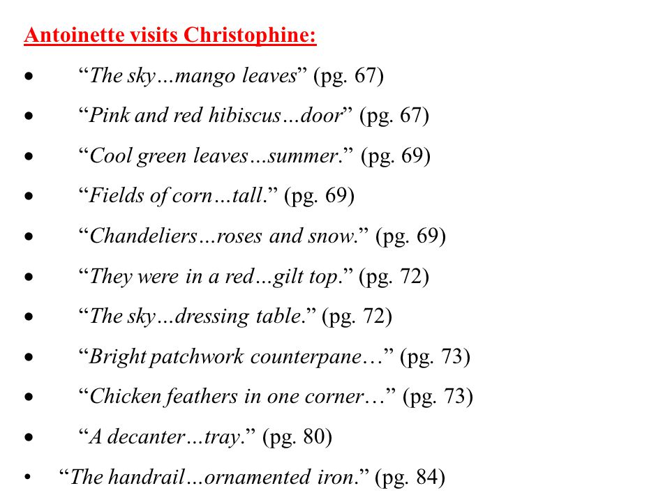 Antoinette visits Christophine:
