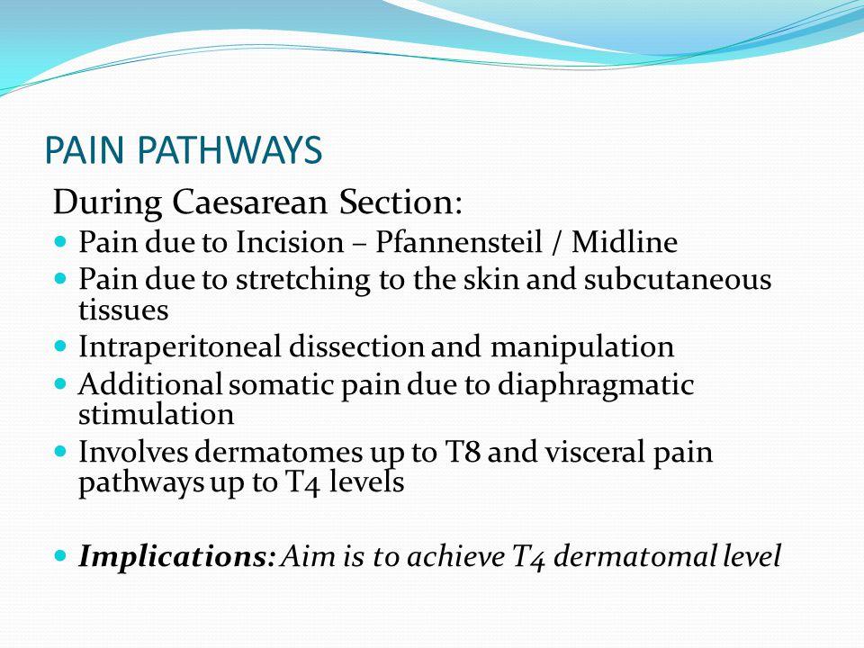PAIN PATHWAYS During Caesarean Section:
