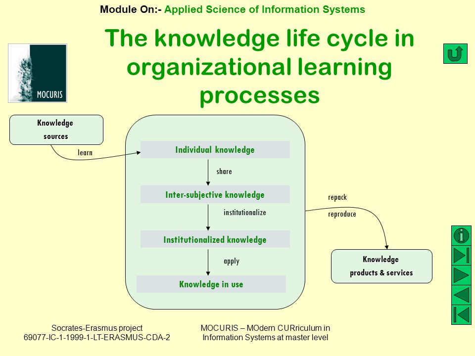 The knowledge life cycle in organizational learning processes