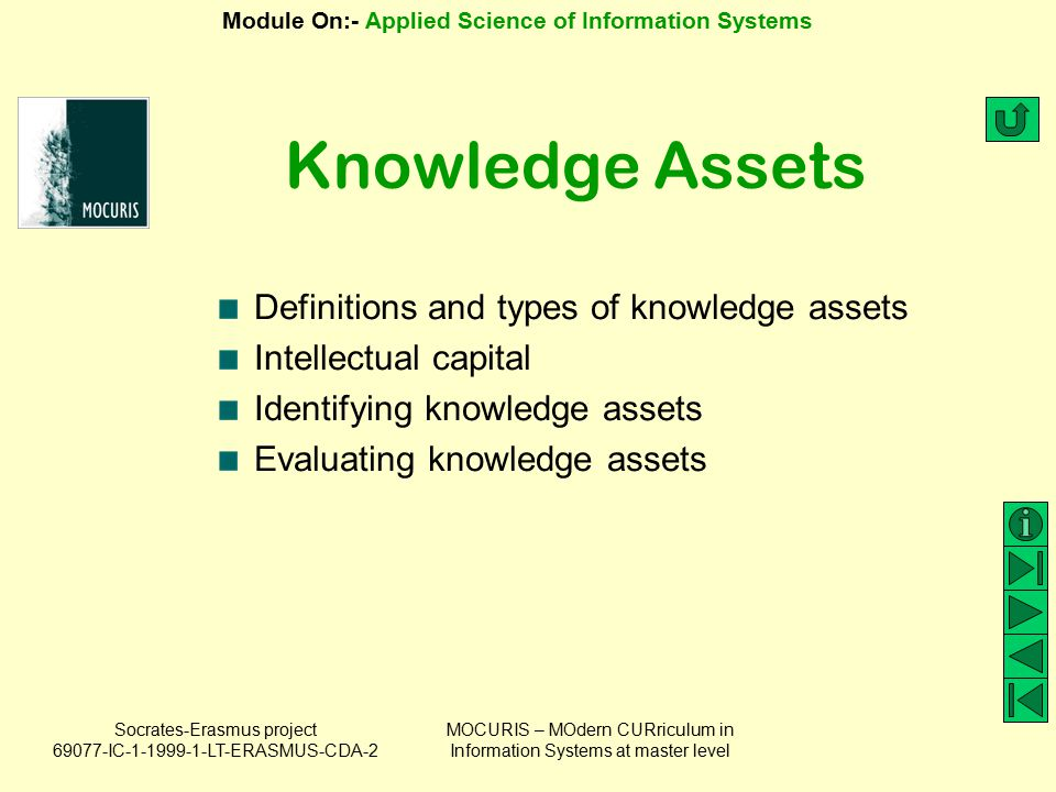 Knowledge Assets Definitions and types of knowledge assets