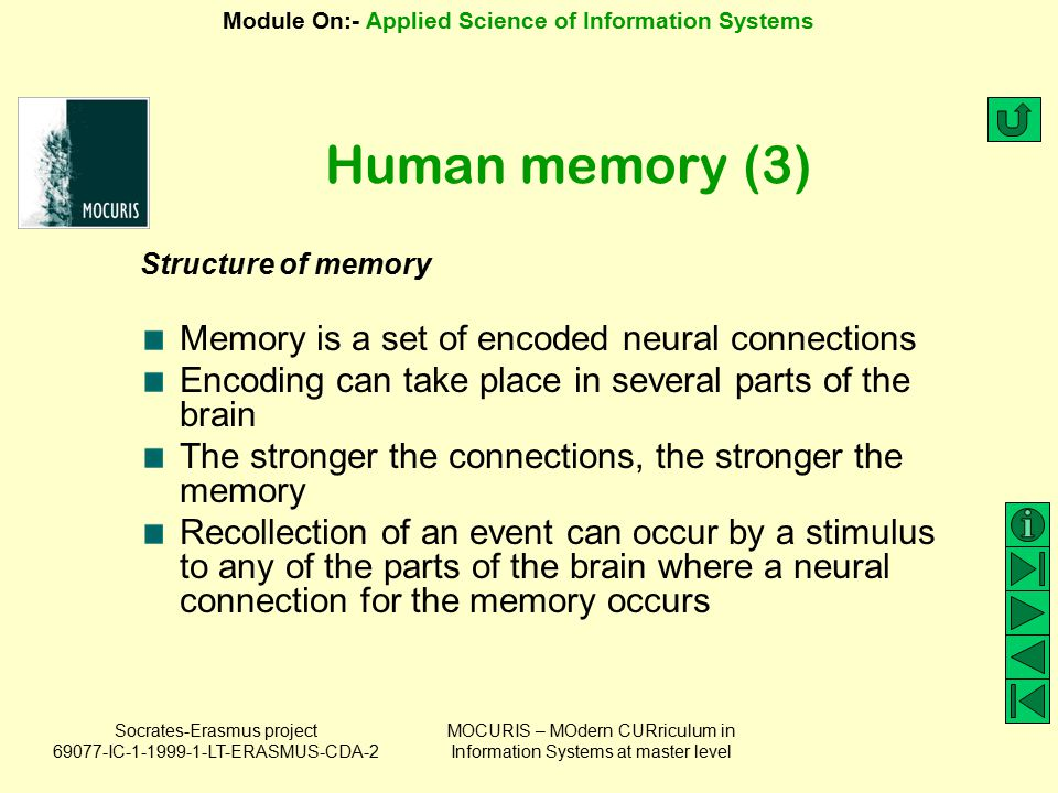 Human memory (3) Memory is a set of encoded neural connections
