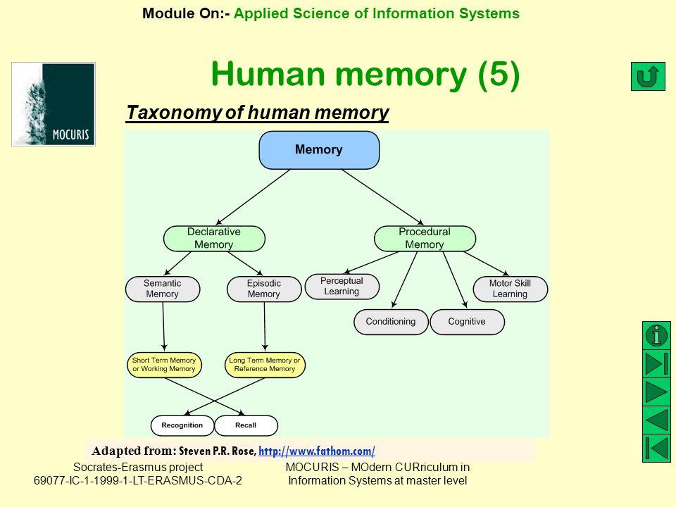 Human memory (5) Taxonomy of human memory