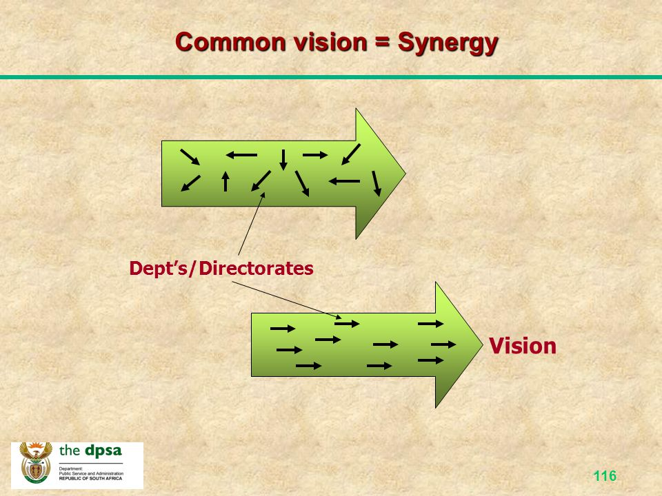 Common vision = Synergy