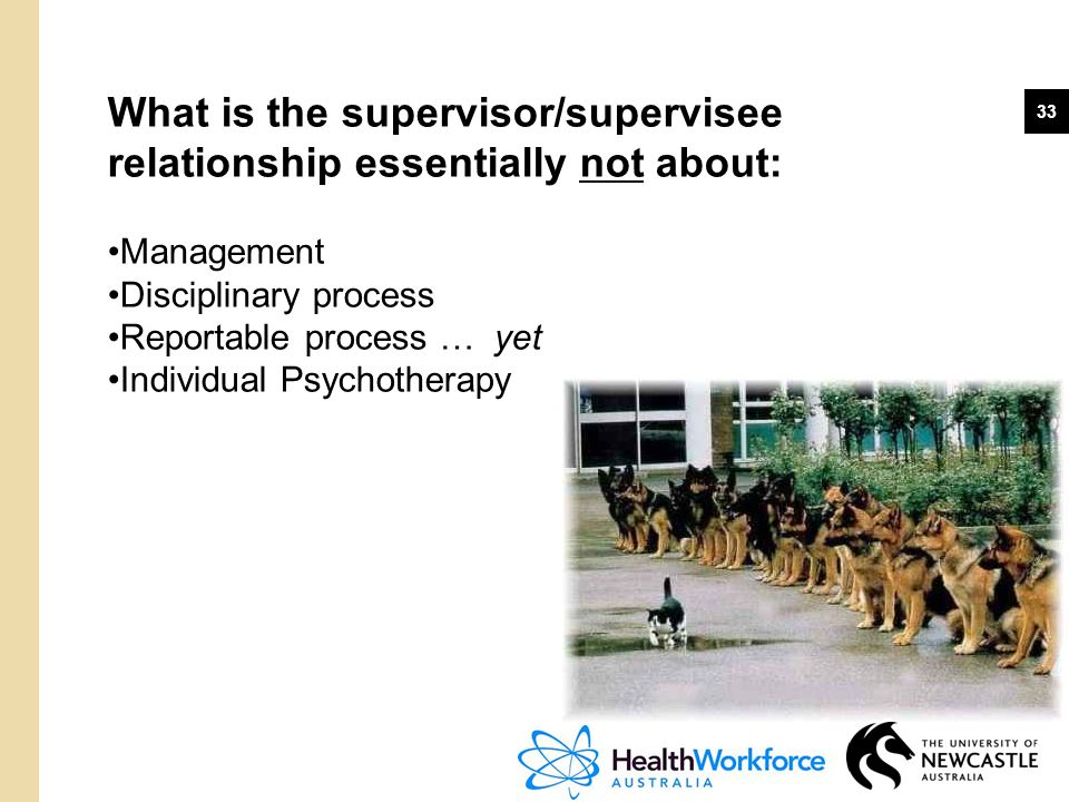 What is the supervisor/supervisee relationship essentially not about: