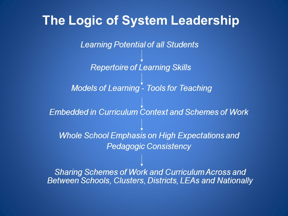 The Logic of System Leadership