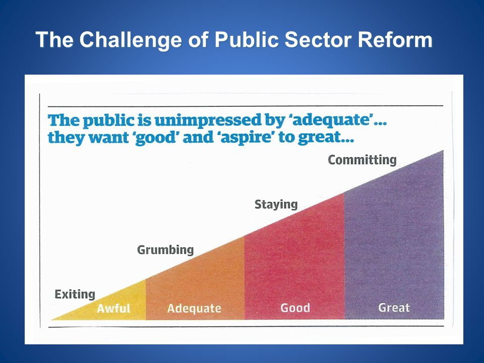 The Challenge of Public Sector Reform