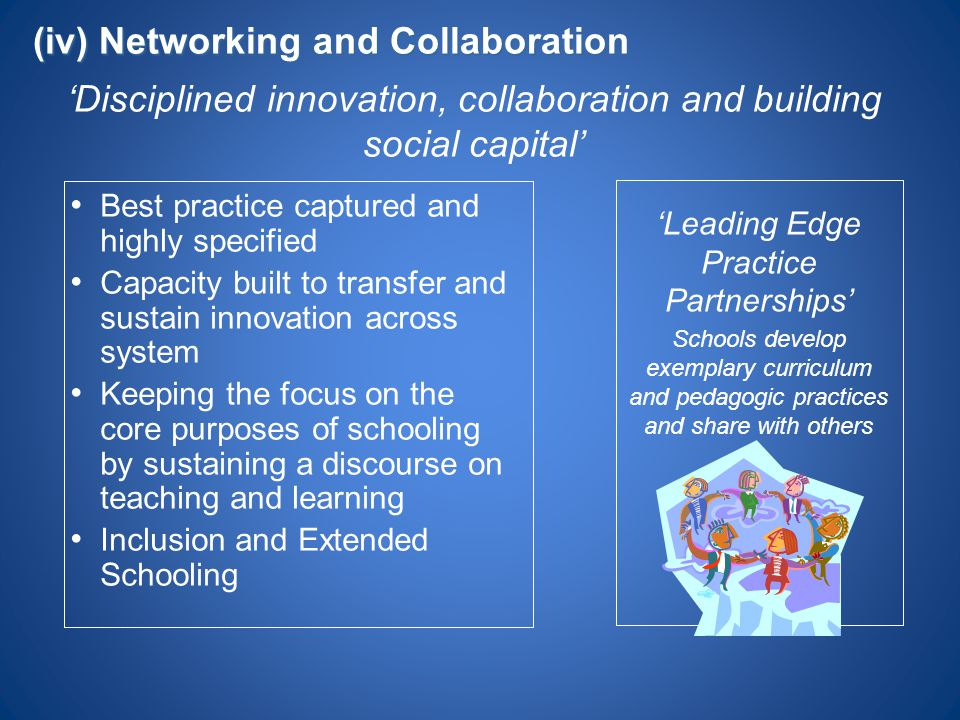 (iv) Networking and Collaboration