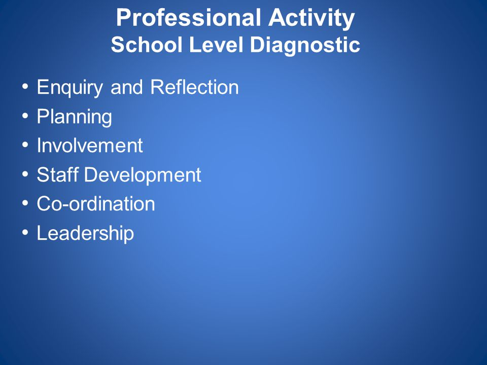 Professional Activity School Level Diagnostic