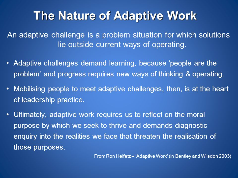 The Nature of Adaptive Work