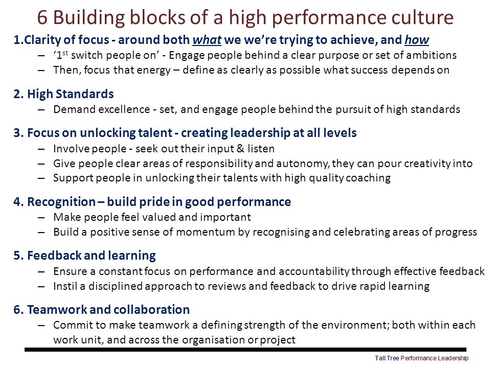 6 Building blocks of a high performance culture