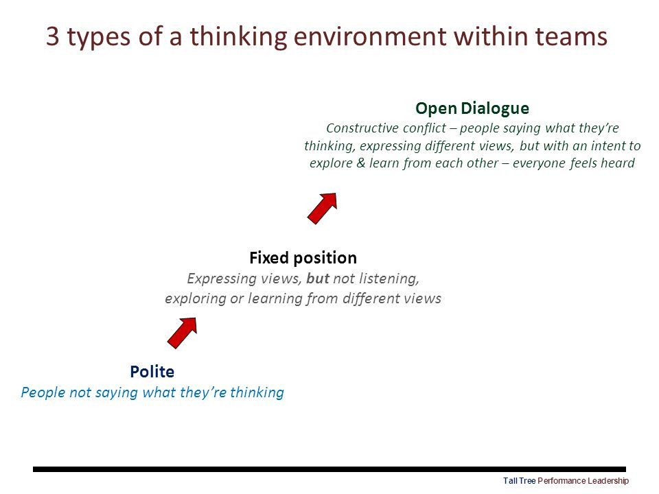 3 types of a thinking environment within teams