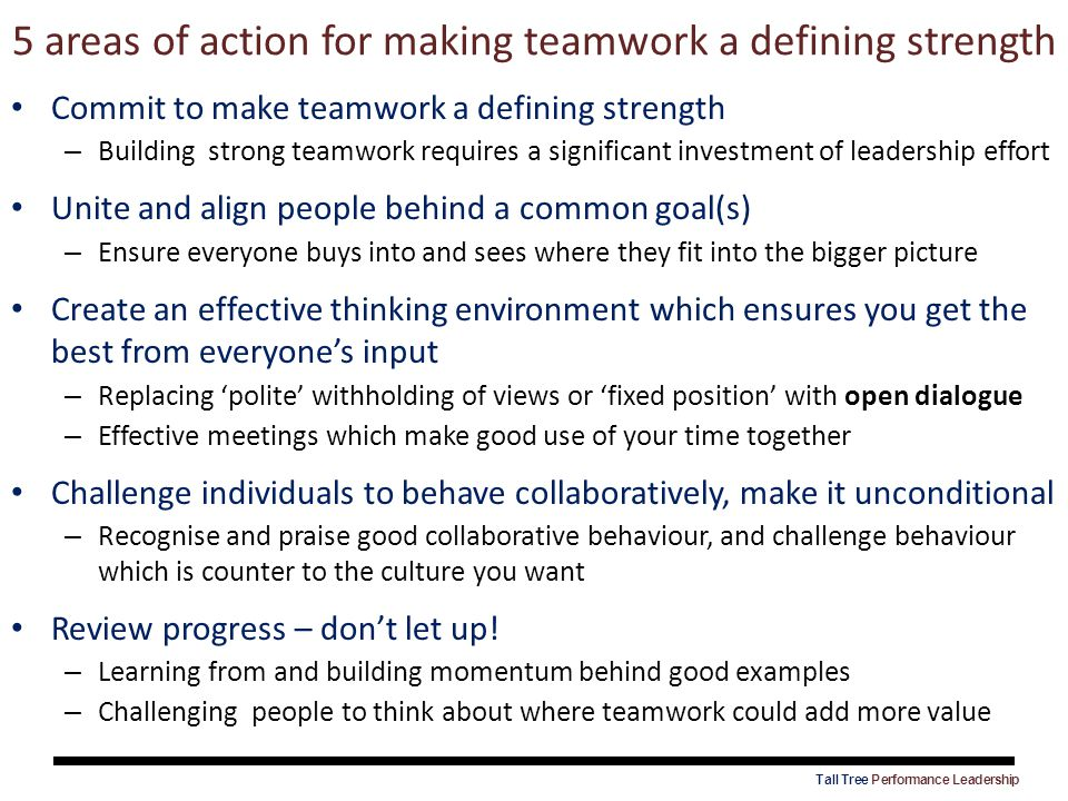 5 areas of action for making teamwork a defining strength