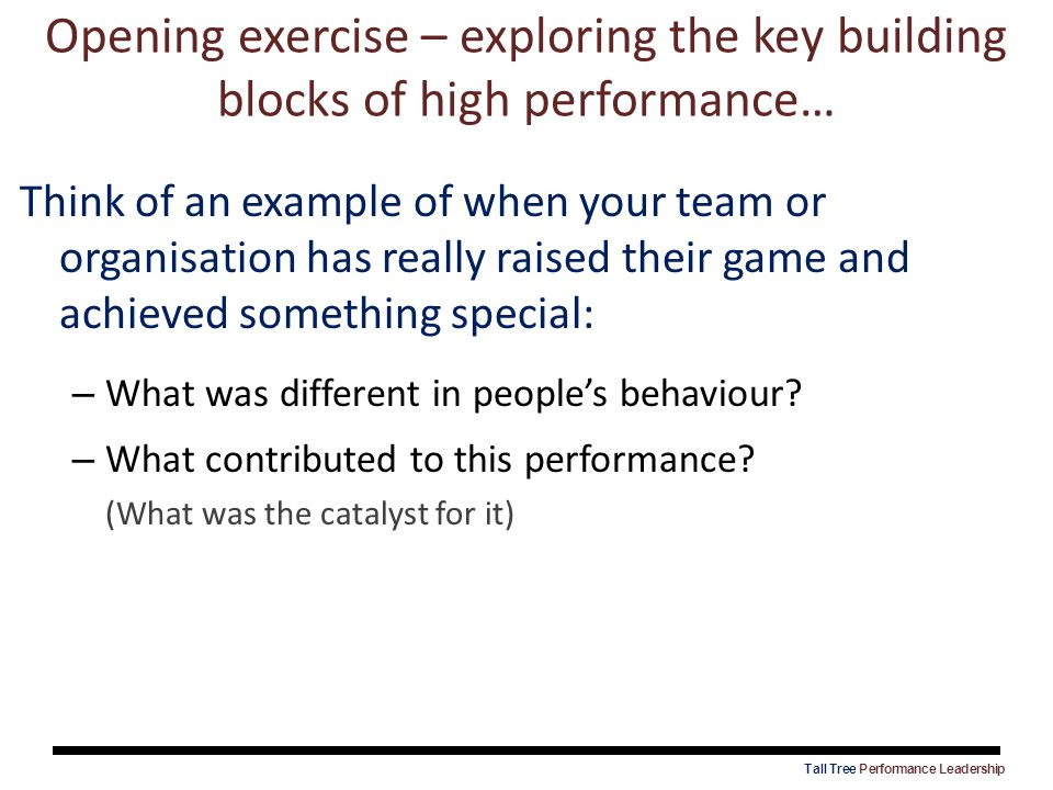 Opening exercise – exploring the key building blocks of high performance…