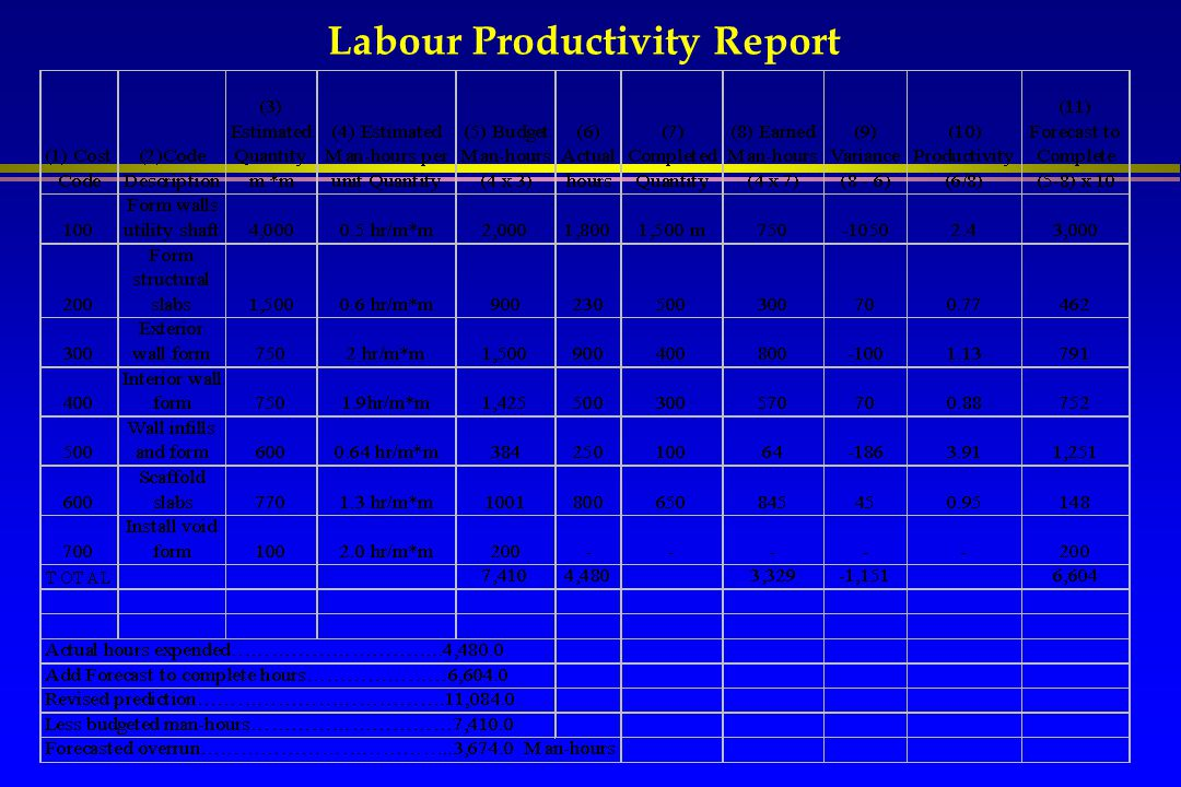 Labour Productivity Report