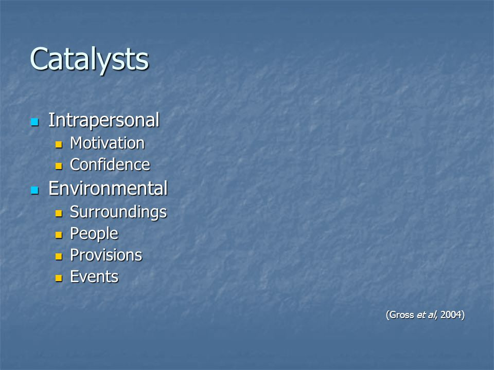 Catalysts Intrapersonal Environmental Motivation Confidence