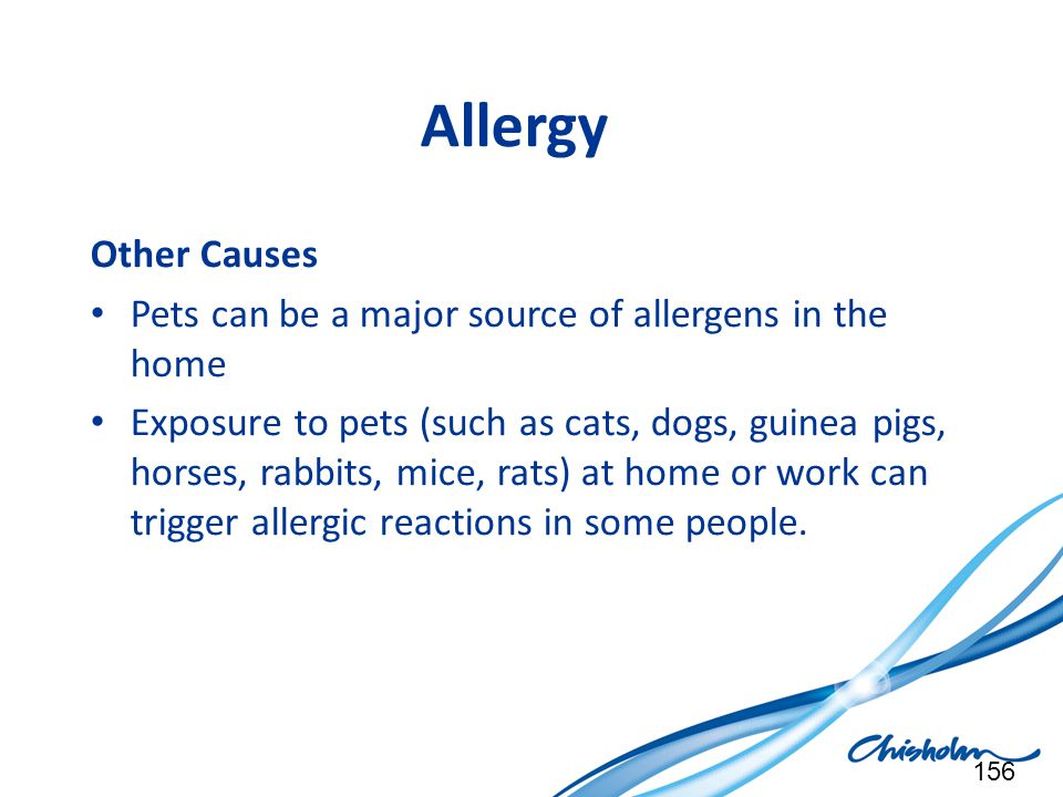 Allergy Other Causes. Pets can be a major source of allergens in the home.