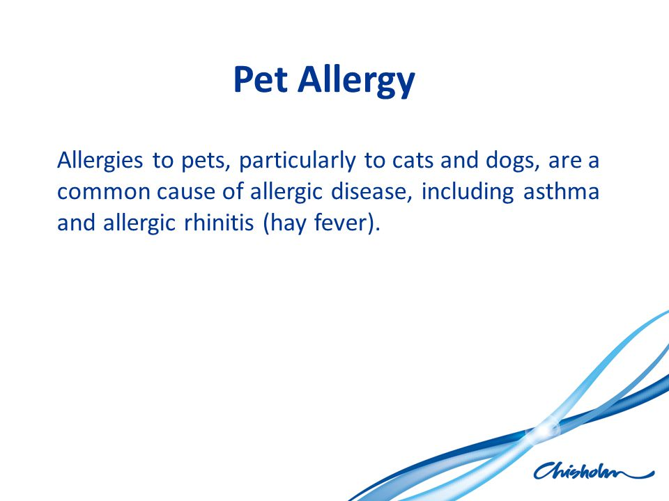Pet Allergy