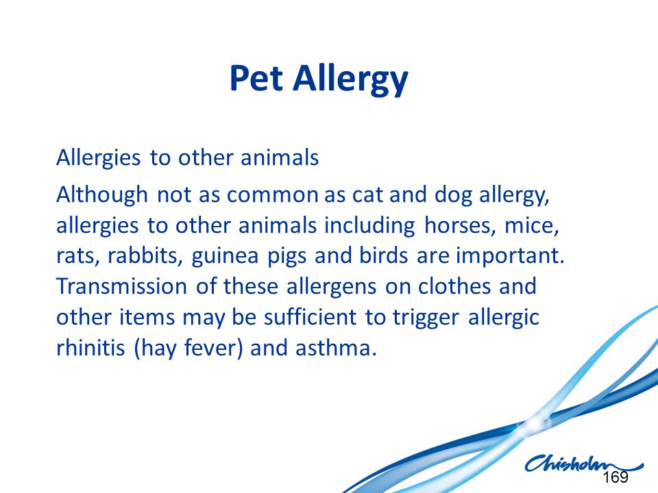 Pet Allergy Allergies to other animals