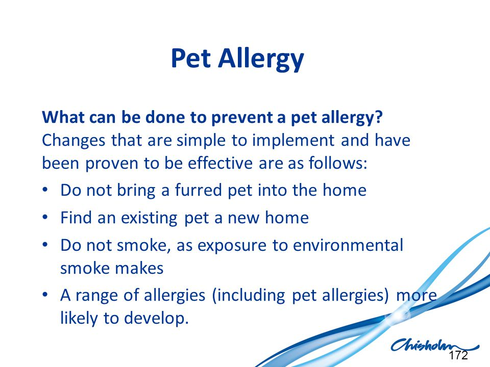 Pet Allergy What can be done to prevent a pet allergy Changes that are simple to implement and have been proven to be effective are as follows: