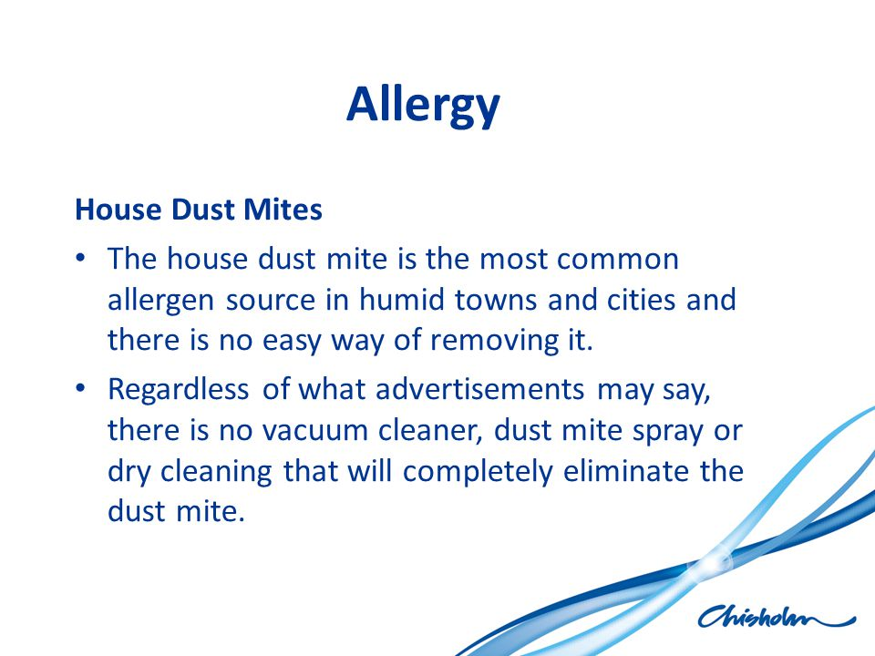 Allergy House Dust Mites