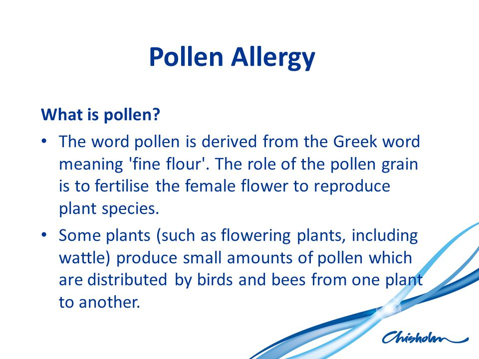 Pollen Allergy What is pollen