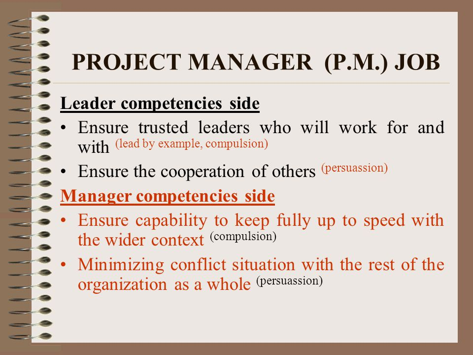 PROJECT MANAGER (P.M.) JOB
