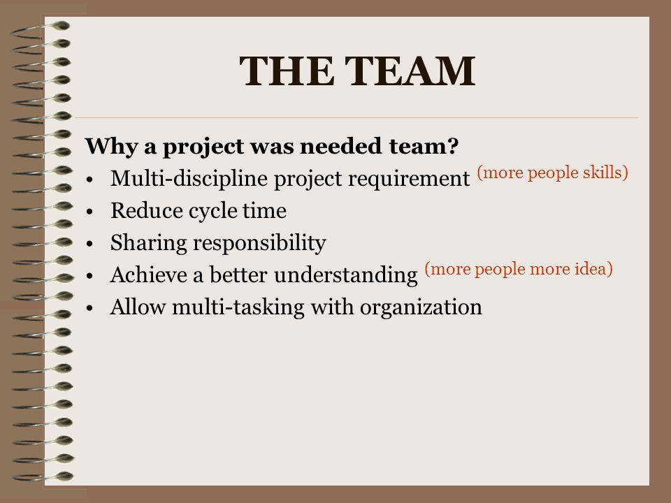 THE TEAM Why a project was needed team